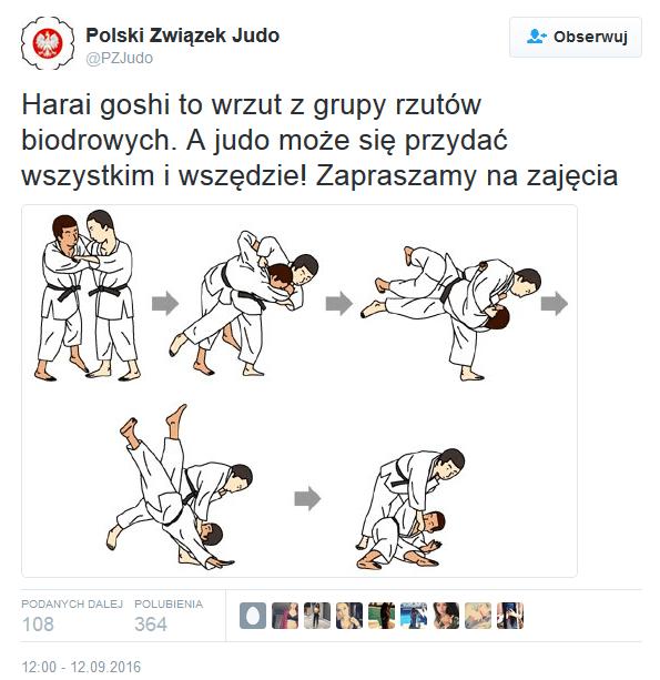 Bójka w Sejmie - Judo RTM
