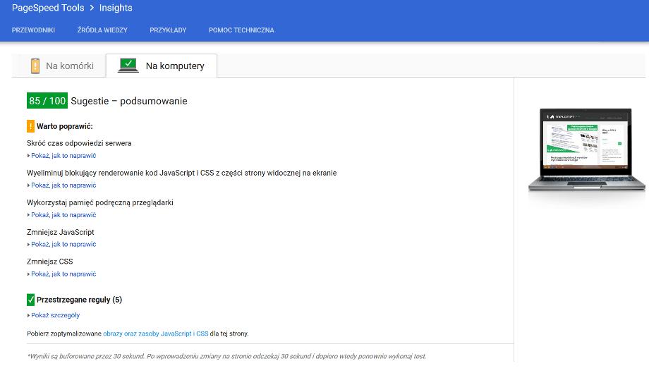 Narzędzie do badania szybkości od Google